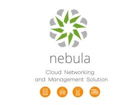ZyXEL 4 lata licencji Professional Pack service dla serii NAP