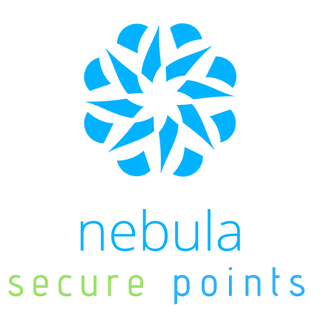 ZyXEL 100 Nebula Security Points (1)